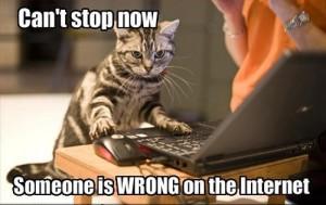 cat arguing